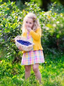 bambina che mangia i mirtilli