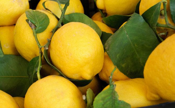 Risultati immagini per limone frutto
