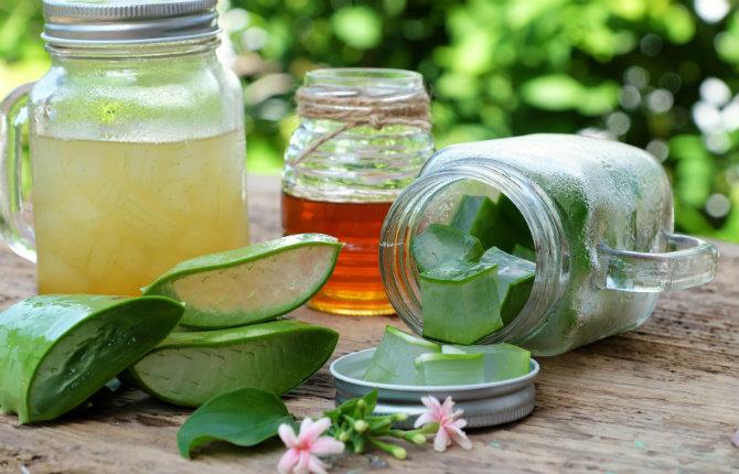 I benefici dell'Aloe Vera per la tua pelle
