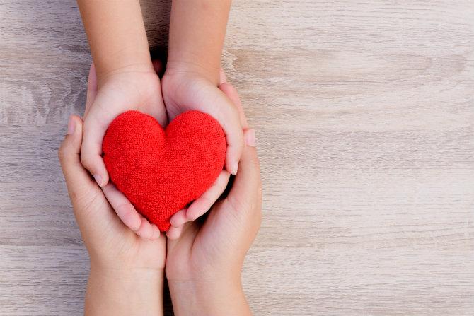 donazione organi dati