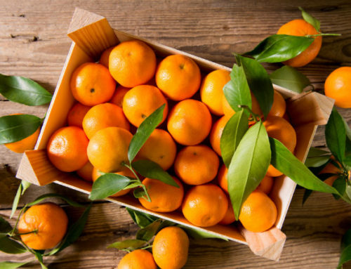 Frutto del mese: la clementina