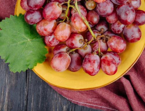 Il frutto del mese: l'uva