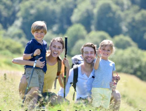 Zecche: come prevenirle e cosa fare in caso di puntura